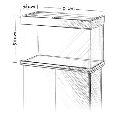 אקווריום + שולחן JUWEL RIO 125 - תמונה 12