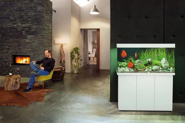 אקווריום + שולחן JUWEL RIO 350 - תמונה 14