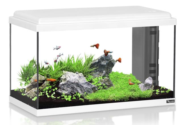 אקווריום  60 ליטר AquaAtlantis Advance 60 - תמונה 1