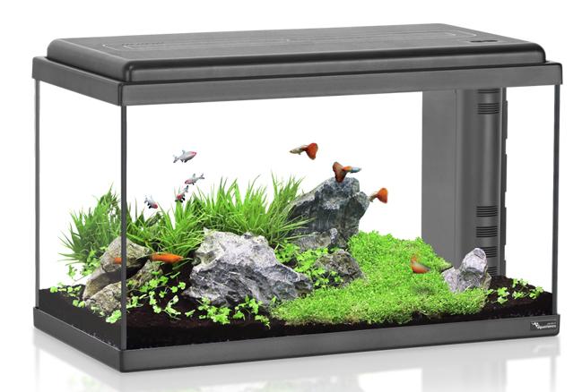 אקווריום  60 ליטר AquaAtlantis Advance 60 - תמונה 2