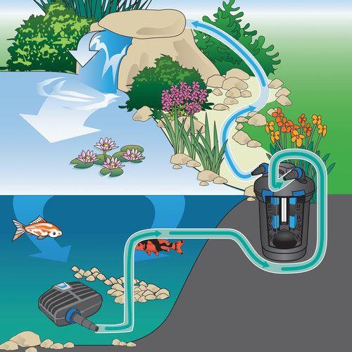 משאבת מים OASE AquaMax Eco Classic 2500 - תמונה 4