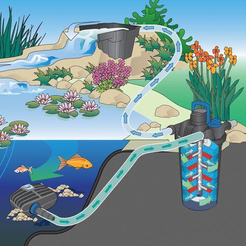 משאבת מים OASE AquaMax Eco Classic 2500 - תמונה 6
