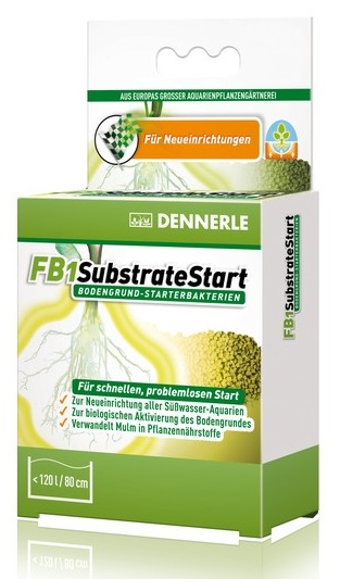 DENNERLE FB1 SUBSTRATE START